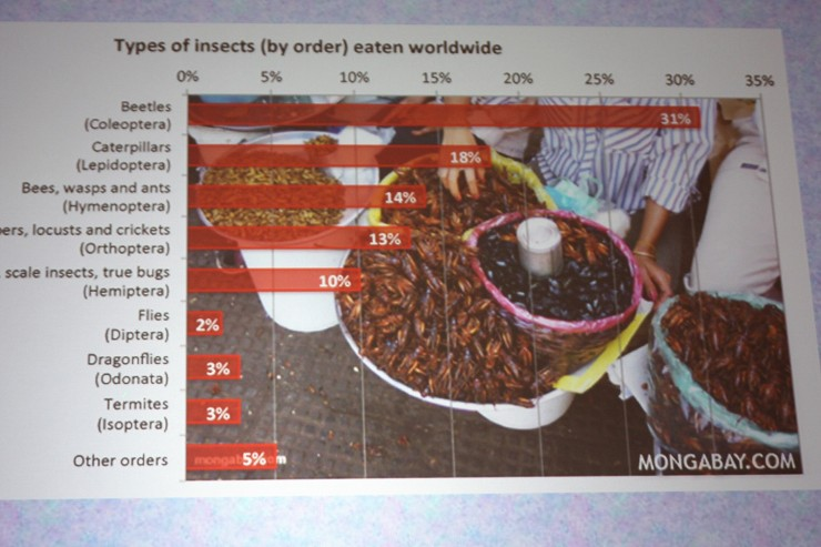 Types of insects eaten worldwide