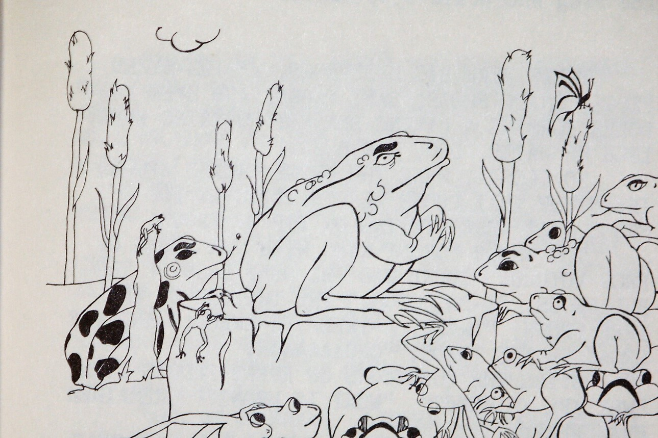 Frog who would stop winter
