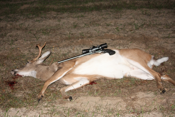 14-in Ruger Old Army with deer 2